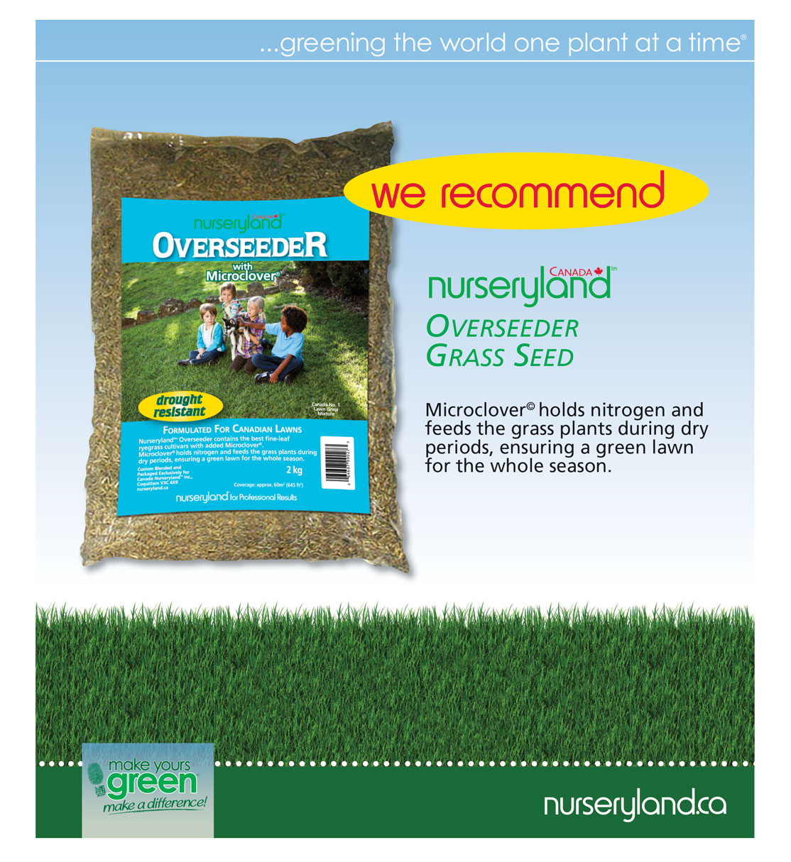 great time to overseed your lawn